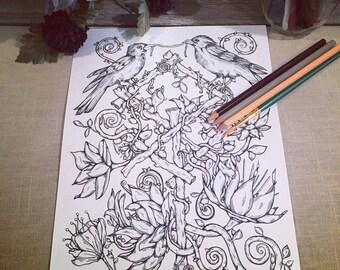 Adult Coloring Page Ravens & Runes Original Nature Art Norse Mythology