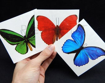 6 Giant Butterfly Temporary Tattoos