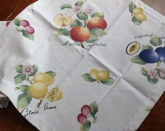 Handmade Cloth Dinner Napkins, Botanical Fruit  Napkins, Set of 4 Napkins, Cotton  Dinner Napkins, Fruit Napkins