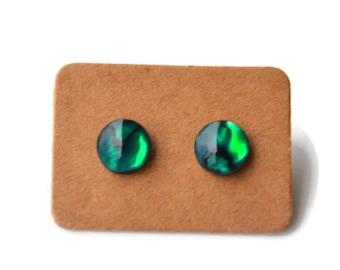 Green Paua Shells . Abalone . Studs . Earrings