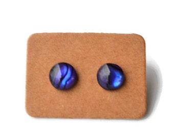 Purple Paua Shells . Abalone . Studs . Earrings
