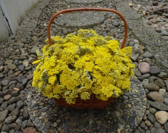 Yarrow Basket  Reserved For Rilda  Home Decor  Floral Arrangement  Dried Flowers  Home Decor  Basket Arrangement