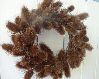 Natural Wreath  Thistle Wreath  Fall Wreath Autumn Wreath  Door Wreath Home Decor  Gift Hostess Gift  Wall Decoration Dried Wreath