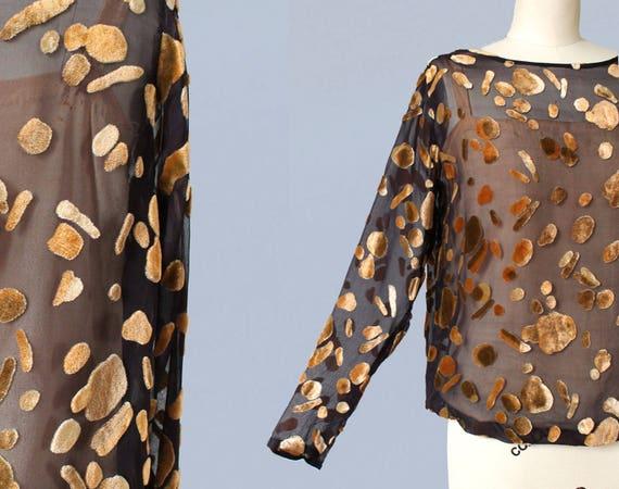 RARE 1920s Blouse / 20s BURNOUT Devore Silk Velvet