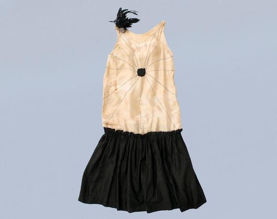 RARE 1920s SPIDER and Web Gender Bending Dress / 1
