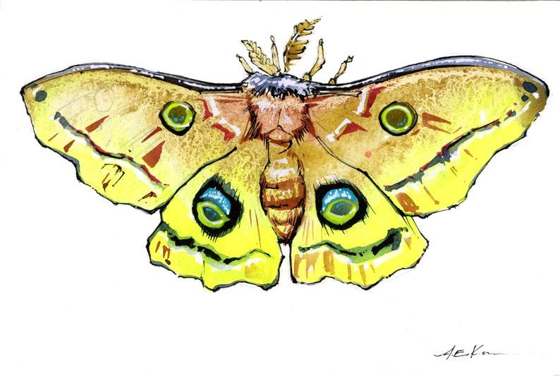 Watercolor Fluorescent Polyphemus Moth #2