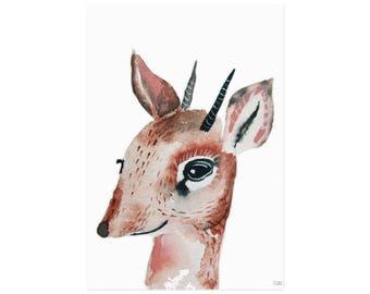 Antilope Poster