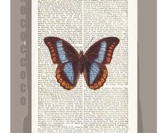 BUTTERFLY  -ARTWORK  printed on Repurposed Vintage Dictionary page -Upcycled Book Print