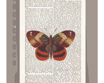 BUTTERFLY ARTWORK  printed on Repurposed Vintage Dictionary page -Upcycled Book Print
