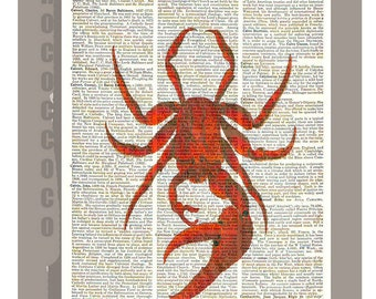 Beautiful CRAB  - ARTWORK  printed on Repurposed Vintage Dictionary page 8 x 10 -Upcycled Book Print