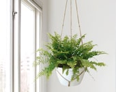 Extra large natural beige macrame plant hanger for hanging planters Raw jute twine pot holder Indoor outdoor garden Modern Home Decor