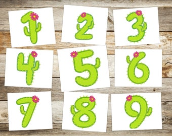 Cute cactus numbers set  Birthday Numbers machine embroidery applique designs assorted sizes birthday party floral cactus for girl, BX incl