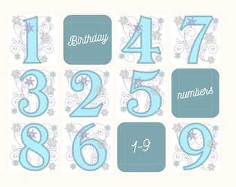 Frozen Swirls Birthday Numbers whole set from 1 up to 9 with wide pearl stitch machine embroidery applique design 4x4, 5x7 INSTANT DOWNLOAD