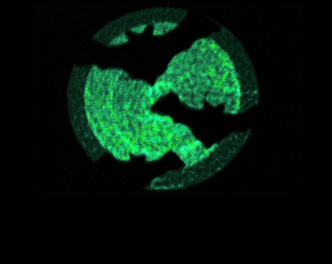 Bats with moon / Glow in the dark special designed machine embroidery / sizes 4x4 and 5x7 / file INSTANT DOWNLOAD