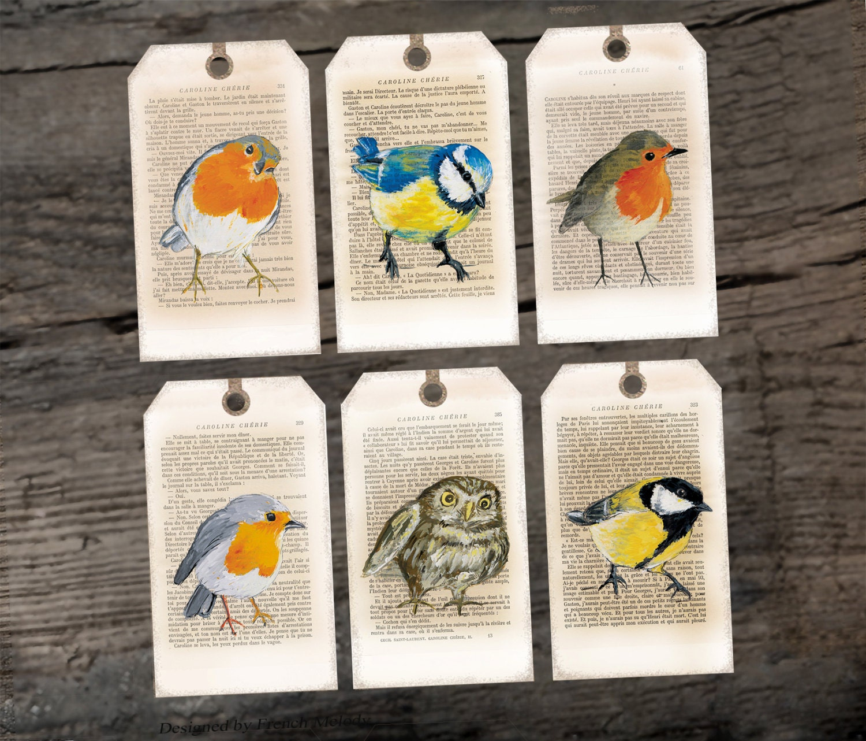 Printable bird Hang/Gift tags Bird portrait collection | Etsy