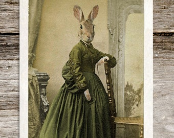 Wilhelmina Potter Antique Anthropomoric Rabbit Cabinet Card Print from Curious London