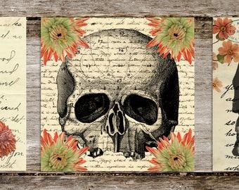 Les Fleurs du Mal Medical Skulls Print Set from Curious London