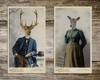 Harold & Maude Antique Deer Cabinet Card Print Set from Curious London