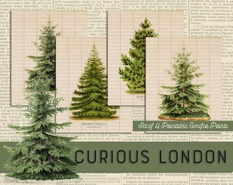 Printable Vintage Style Christmas Pine Tree Instant Download Conifer Art Prints from Curious London