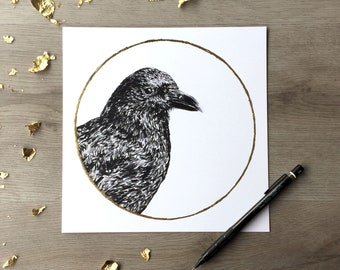 American Crow Corn Moon September - Print of Original Graphite Drawing with Gold Leaf - Animal Portrait
