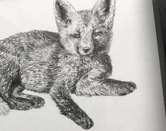 Fox Kit - Baby Fox - Little Fox - Baby Animal - Wall Art - Original Pencil Drawing - one of a kind Art