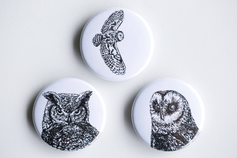 Owl Magnets  Horned Owl Barn Owl Set of Strong Magnets  image 0