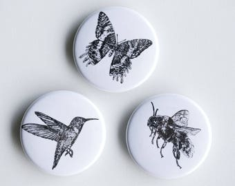 """Bee, butterfly hummingbird pins - pollinators Pin-Back Buttons - Set of 3 Pin-Back Buttons - 1.5"""" - Woodland pin Animal pin Pingame Badges"""