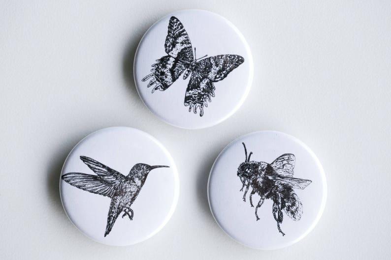 Pollinators Magnets  Butterfly Bee Hummingbird Set of image 0