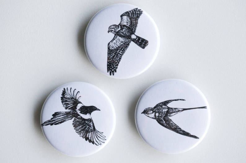 Magpie Falcon Swallow Magnets  In Flight Set of Strong image 0