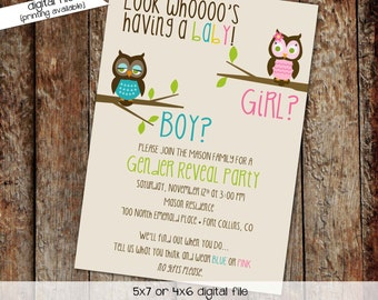 Gender reveal invitation owl baby shower diaper wipes brunch couples coed pink or blue he she twins sprinkle neutral | 1433 Katiedid Designs