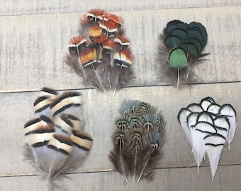 Set Of 60 Exotic Pheasant Feathers Colorful Feathers Feather Sampler Unique Feathers Small Feathers Body Feathers Craft Feathers