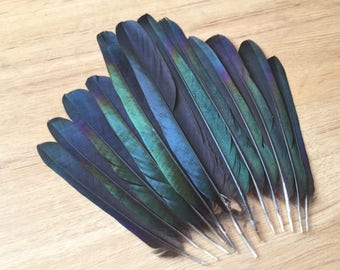 real feathers etsy