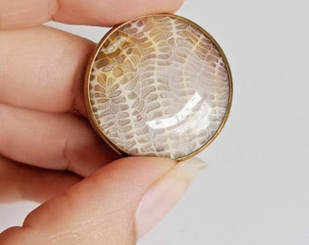 Fossilized Coral in Brass Pendant