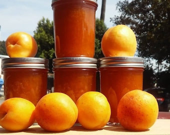 Apricot Jam 8 oz.  as seen in the LA TIMES 7/18/21 Poppy Apricots, Full Tart Flavor Delicious Vegan Food Gift!