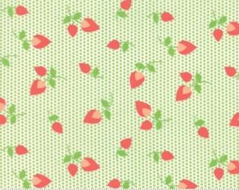 Sundrops Rosebuds Celery Green 29012 18 Corey Yoder of Little Miss Shabby for Moda