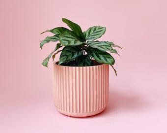Medium Riley Planter   Ridged Planter   Fluted Planter Pot   Modern Planter  