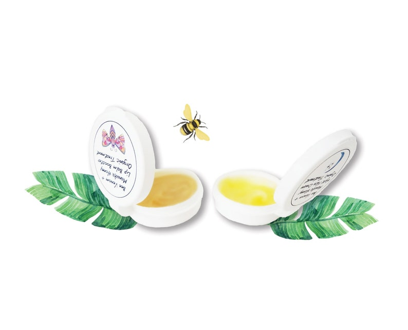 SAMPLE PACK: BeeBee Skin Superfood Anti-Aging Overnight Face image 0