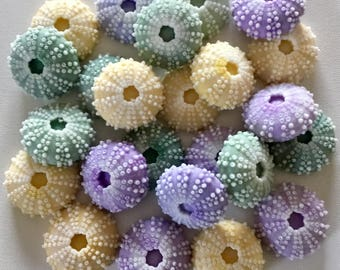 Sea Urchin Soaps -  Pastel Lot of 25, Beach, Soap, Nautical, Beach Wedding, Weddng Favor, Beach Theme, Sea Urchins, Custom Colors Welcome