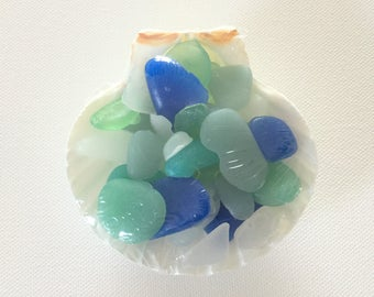 Sea Glass Soap Favors, Scallop Dish, Showers, Party Favors,Wedding Favors, Lobster Bake / Party Favors,Weddings, Mother's Day, Custom Work