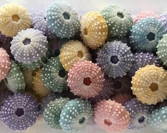 Lot of 50  SPRING Sea Urchin Soaps - Beach, Soap, Nautical, Beach Wedding, Weddng Favor, Beach Theme, Sea Urchins, Custom Colors Welcome
