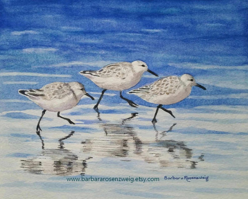 Beach Sandpipers Watercolor Painting Coastal Decor Anna image 0