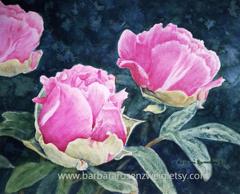 Pink Peony Watercolor Painting Flower Wall Art Canvas Print image 0