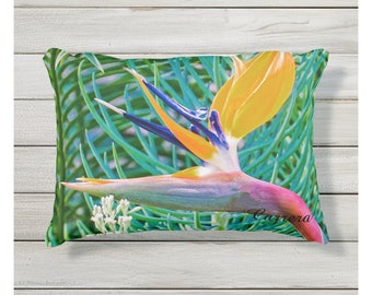 Outdoor pillows, Buy one get one sale
