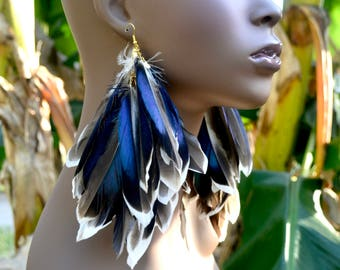 Blue and Black Mallard Duck Feather Earrings, Iridescent Feather Earrings, Natural Feathers with White tips. Real Feather Earrings, Blue