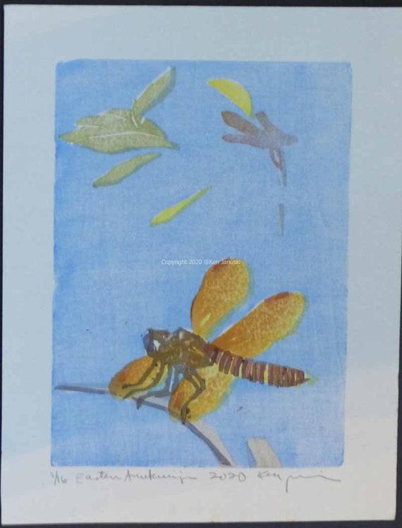 Original Moku Hanga Print of Avocet and Moorhen on Masa Dosa Paper