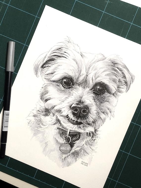 Custom Pen and Ink Pet Portrait