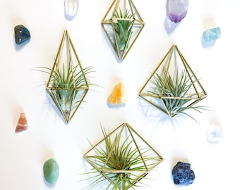 Himmeli Wall Sconce Air Plant Hanger.  Wall mounted himmeli geometric diamond air plant holder.  Air Plant wall hanging. Modern Brass Decor.