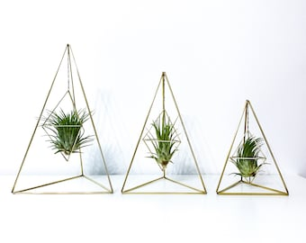 Table Top Air Plant Pyramid. Three Sizes Available. Geometric Brass Air Plant Holder.  Air Plant Display. Live Air Plant Included.