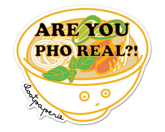 Are You Pho Real Pho Bowl Sticker Pack of 3