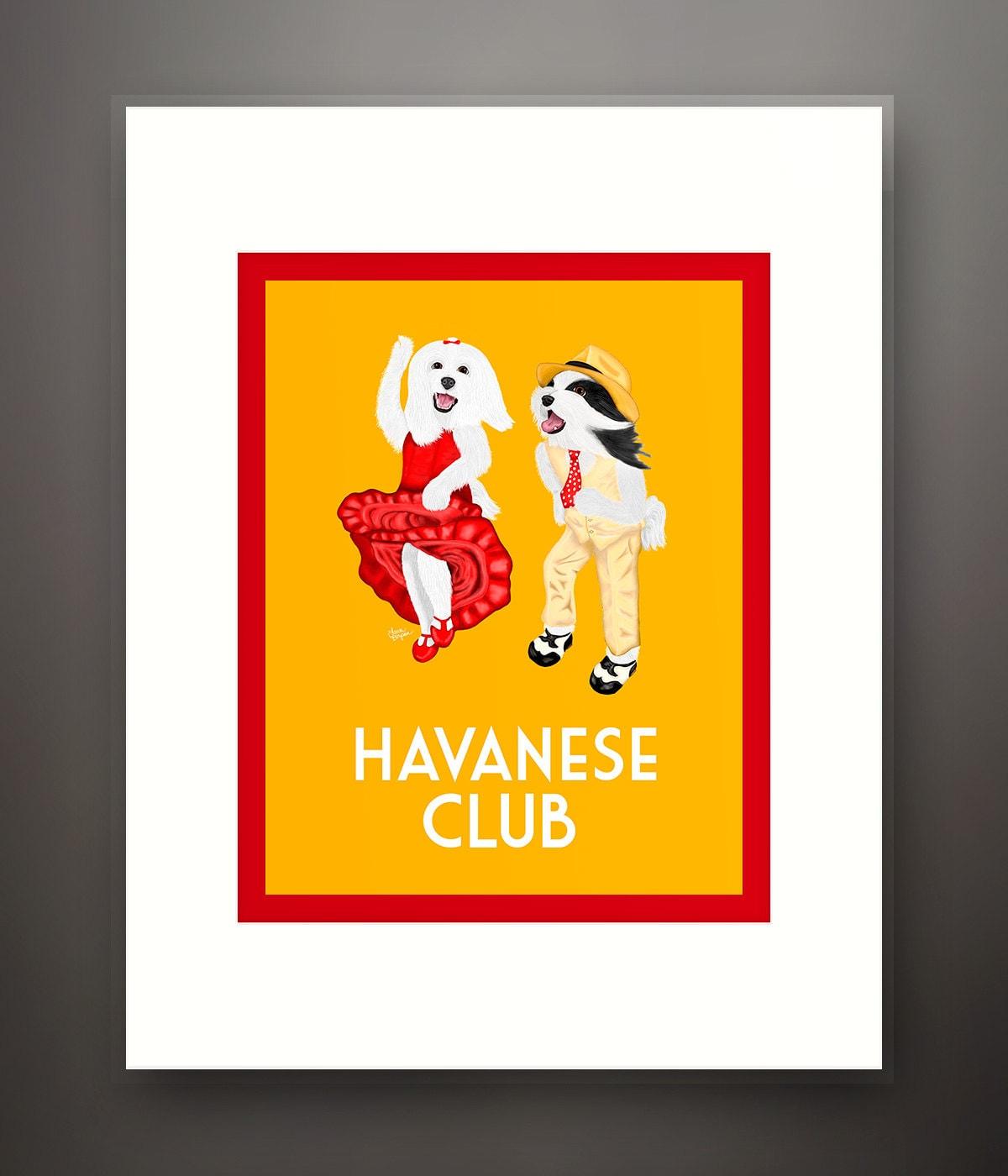 Havaneser Hund verfilzt 8 x 10 Print Frame passt 11 x 14   Etsy